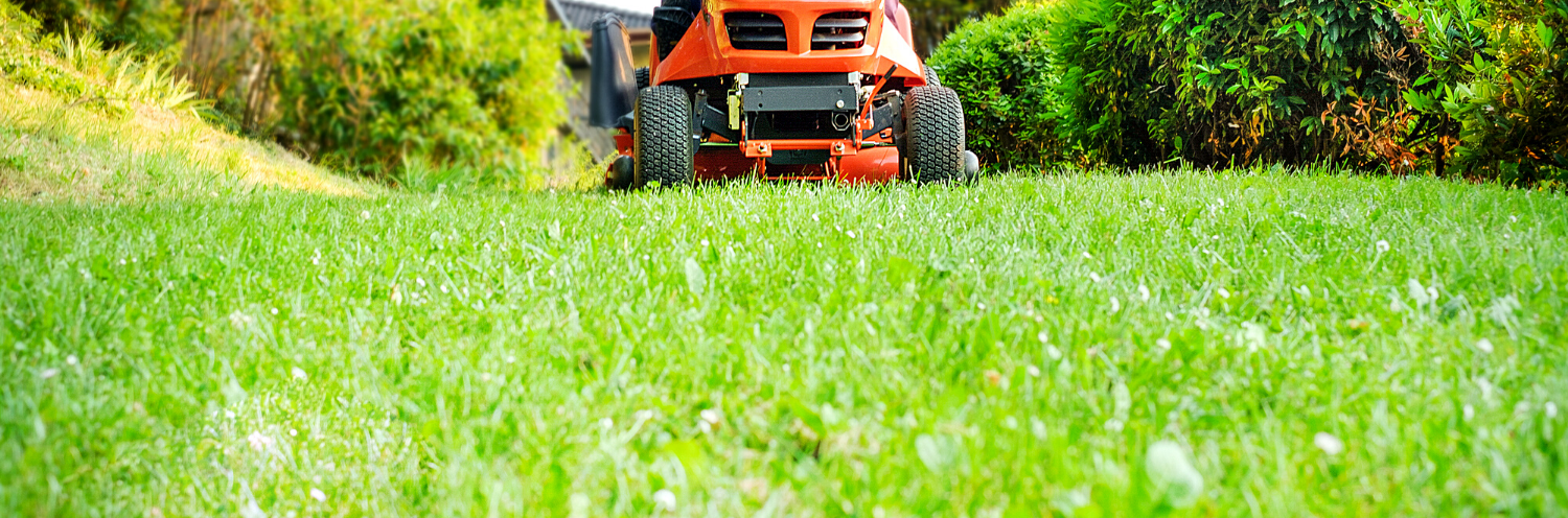 <h2 style='color:#FFFFFF !important;                                              '>Professional Lawn Care</h2>                                             <span class='slideDesc'>Contact us today to get started.</span>                                                                                           <div class='responsiveSliderButton'><a style='text-decoration: none;'                                              href='/contact-us'>Contact</a></div>